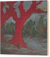The Three Primary Colors Are The Unchanging Center Of The Stories Wood Print