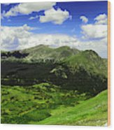 The Top Of Independence Pass Wood Print