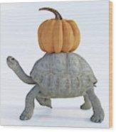 The Tortoise And The Pumpkin Wood Print