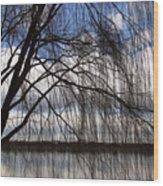 The Veil Of A Tree Wood Print