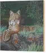 The Wild Cat  Wood Print