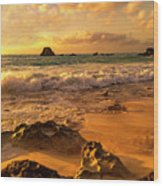 Thoughtful Morning Golden Coastal Paradise  Wood Print