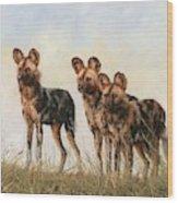 Three African Wild Dogs Wood Print