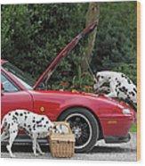Three Dalmatians Around Red Sports Car Wood Print