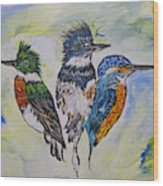Three Kingfisher Birds - Painting By Ella Wood Print