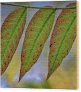 Three Leaves Wood Print