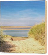 Through The Dunes Over To Budle Bay Wood Print