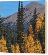 Thunder Mountain Aspens Wood Print