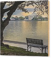 Tidal Basin With Cherry Blossoms And Wood Print