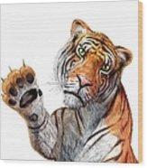 Tiger, Artwork Wood Print