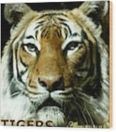 Tigers Mascot 4 Wood Print