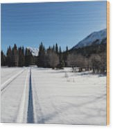 Tire Tracks In Snow In An Isolated Area Of The Kenai Peninsula Wood Print