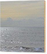 To See The Sea Wood Print