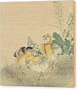 Top Quality Art - Keinen Kachoshokan 12view 3 Wood Print