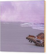 Topsail Island Friends By The Sea Wood Print