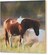 Totem Animal Book Horse Wood Print