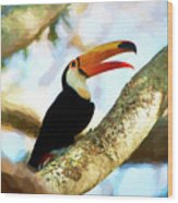 Toucan On A Tree Wood Print