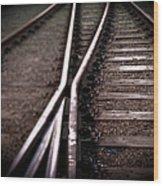 Train Line Crossing Wood Print