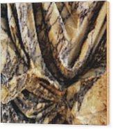 Trajan's Marble Wood Print