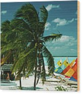 Treasure Cay Wood Print