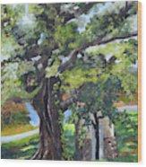 Tree At Cartecay Wood Print