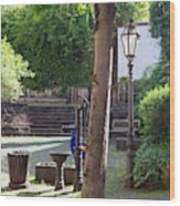 tree lamp and old water pump in Cochem Germany Wood Print