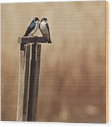 Tree Swallows On Wood Post Wood Print