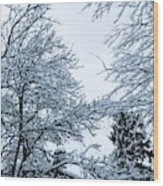Trees With Snow Wood Print