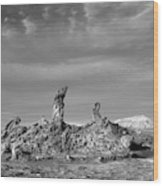 Tres Marias Black And White Moon Valley Chile Wood Print