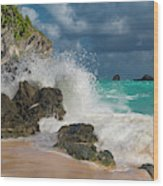 Tropical Beach Splash Wood Print