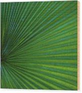 Tropical Leaf Wood Print