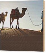 Tuareg Man & Camels, Erg Chebbi, Sahara Wood Print