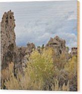 Tufa Of Mono Lake Wood Print