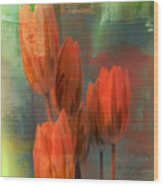 Tulips With Green Background Wood Print