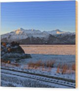 Turnagain Arm And Kenai Mountains Alaska Wood Print