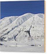 Turnagain Pass On The Kenai Peninsula Alaska Wood Print