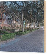 Twilight Panorama Of Charleston Waterfront Park Promenade And Shady Canopy Of Oaks - South Carolina Wood Print