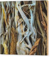 Twisted Tree Limbs Wood Print