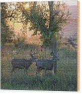 Two Deer Sunset Wood Print