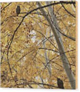Two Owls In Autumn Tree Wood Print
