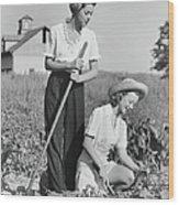 Two Women Working On Field, B&w Wood Print