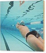 Underwater Swimmer Wood Print