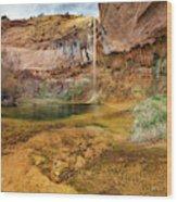 Upper Calf Creek Falls Utah Wood Print