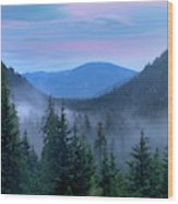 Upper Priest Lake Scenic Area Wood Print