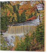 Upper Tahquamenon Autumn Colors -0007 Wood Print