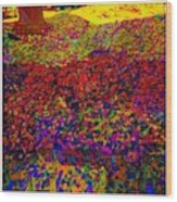 Van Gogh Visits My Back Yard Wood Print