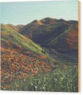 Velvet Hills Wood Print