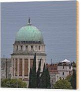 Venetian Skyline Wood Print