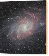 Very Detailed View Of The Triangulum Galaxy Wood Print