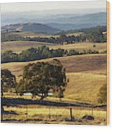 Victoria Countryside Layers Wood Print